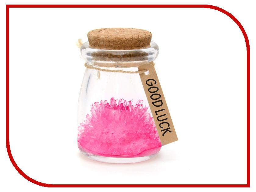 Набор для выращивания кристаллов Crystal Garden Любви Pink<br>