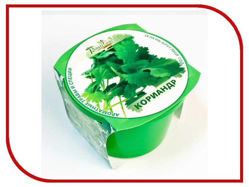 Растение BontiLand Зелень круглый год Кориандр 411821<br>