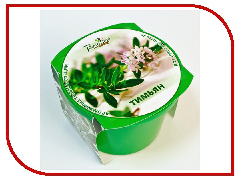 Растение BontiLand Зелень круглый год Тимьян (Чабрец) 411944