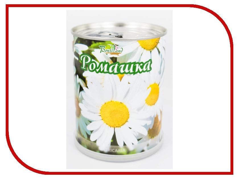 Растение BontiLand Ромашка 77002 растение bontiland астра 411029