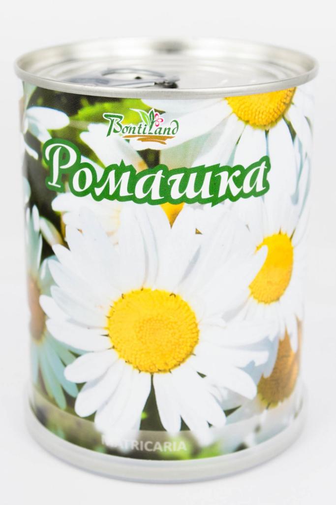 Растение BontiLand Ромашка 77002