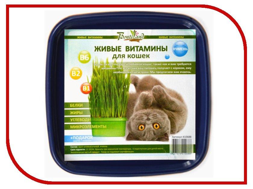 Растение BontiLand Живые ВИТАМИНЫ для кошек Ячмень 410688 витамины