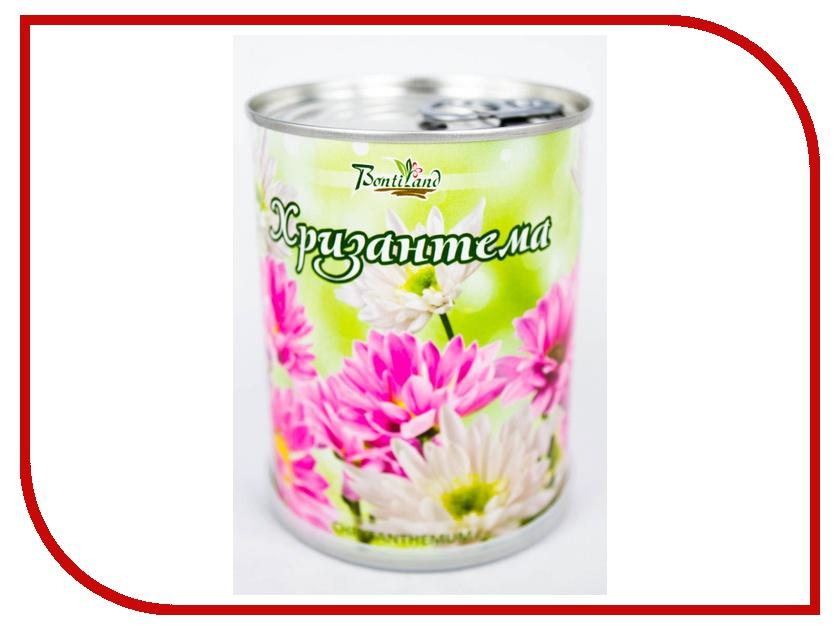 Растение BontiLand Хризантема 410510 хризантема чай травяной чай аромат рифма покрышка хризантема хризантема чай 50г консервы