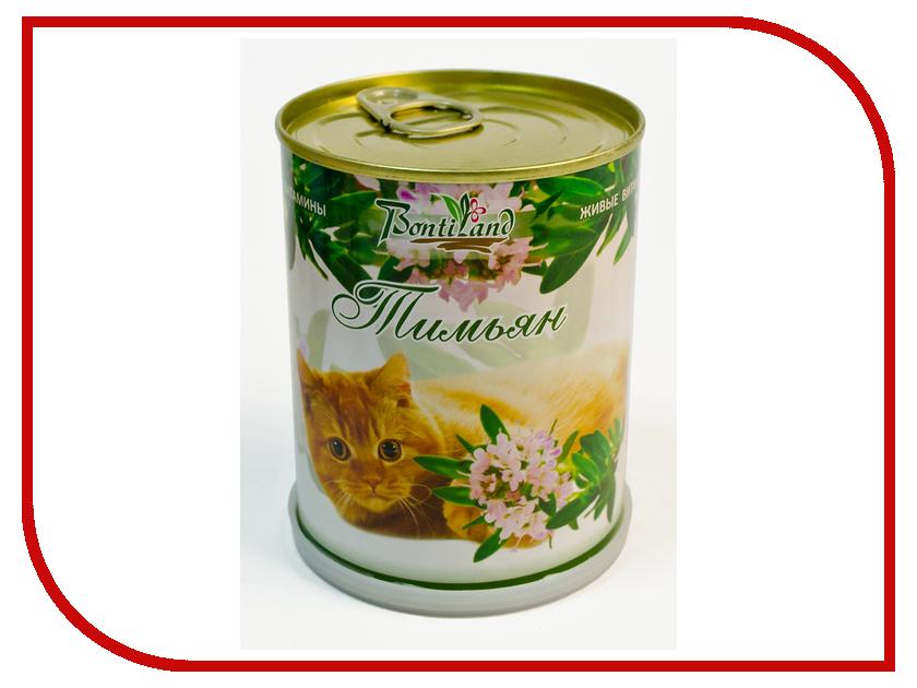Растение BontiLand Живые витамины для кошек 410701 Тимьян