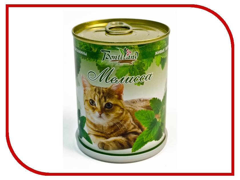 Растение BontiLand Живые витамины для кошек 410718 Мелисса