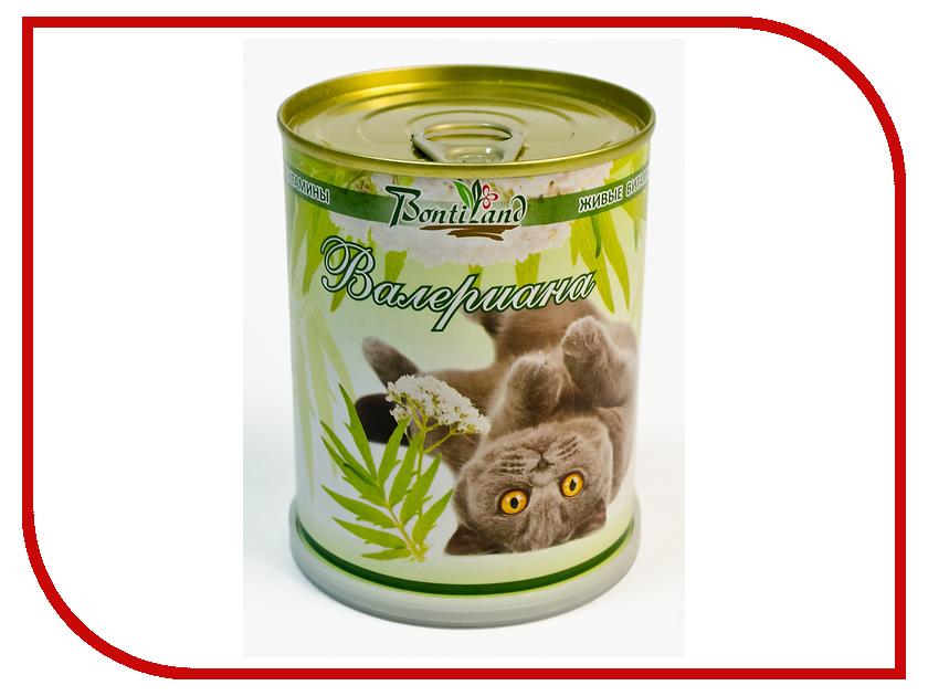 Растение BontiLand Живые витамины для кошек 410732 Валериана