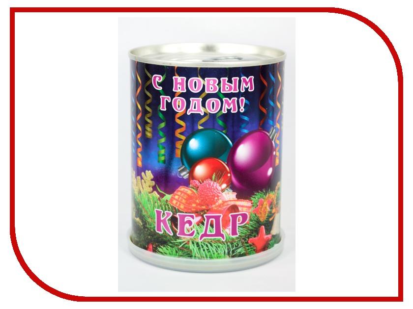 Растение BontiLand Кедр новогодний 411739<br>