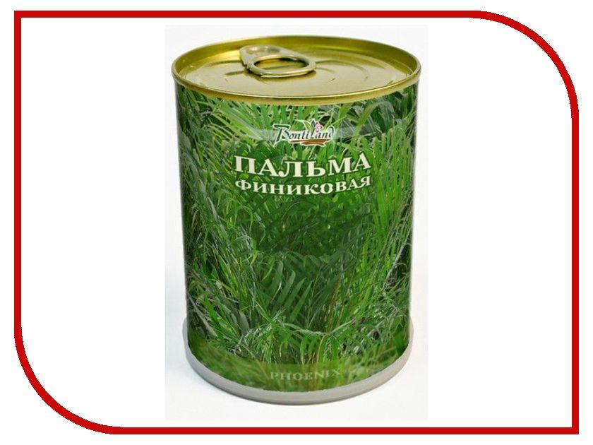 Растение BontiLand Пальма Финиковая 411173<br>