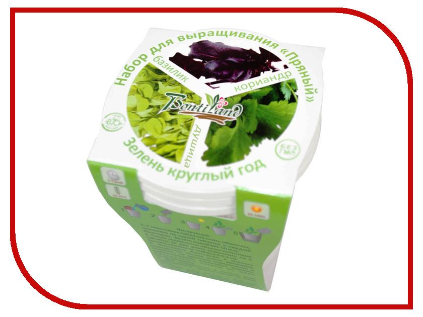 Растение BontiLand Зелень круглый год 412323 Набор Пряный №1