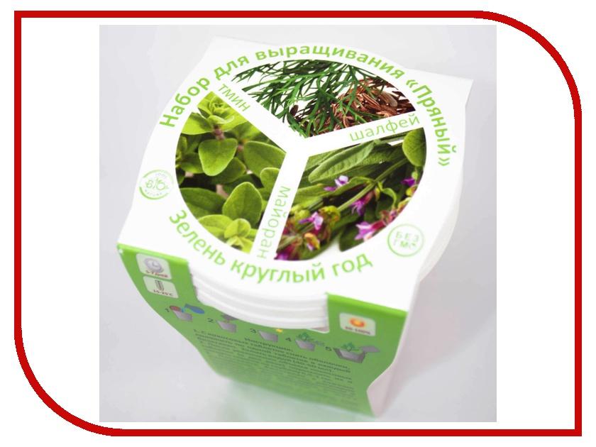 Растение BontiLand Зелень круглый год 412330 Набор Пряный №2