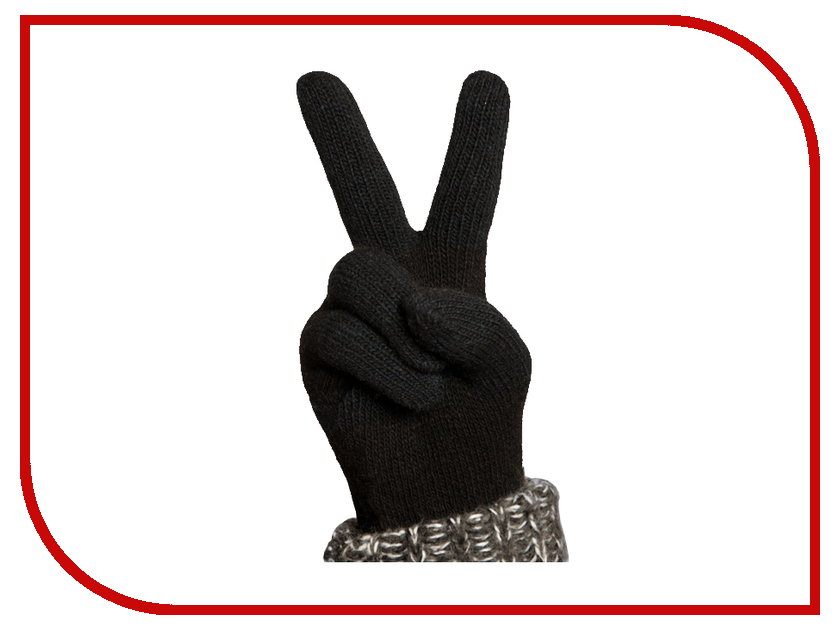 Теплые перчатки для сенсорных дисплеев iGlover Nord M Black