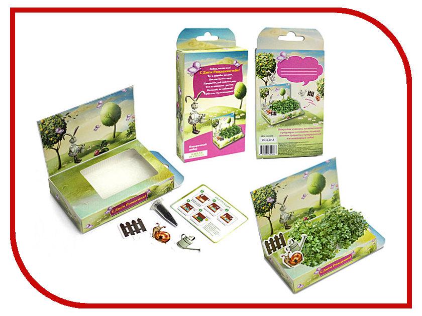 Растение Happy Plant hps-196 Подарочный набор С Днём рождения,Зайка!