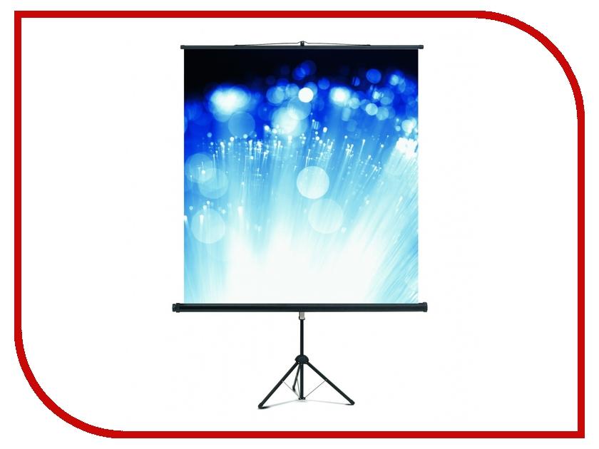 Экран Magnetoplan Cineflex 200x200cm