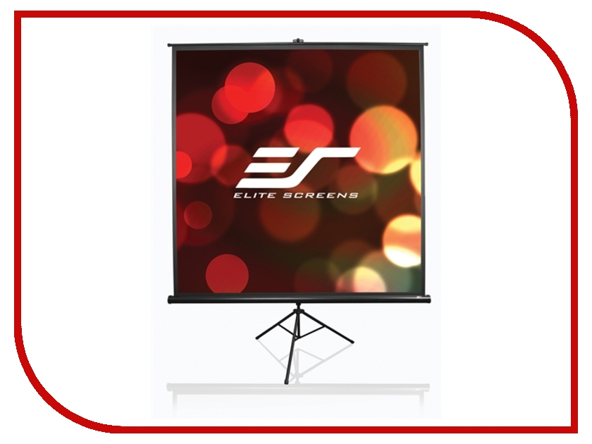 Экран Elite Screens T113NWS1 203x203cm MW White