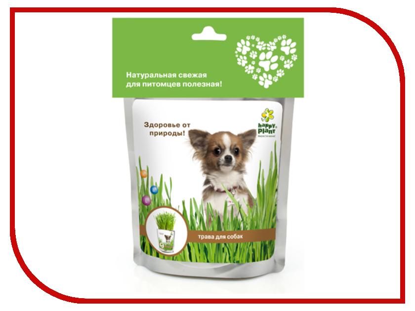 Растение Happy Plant Трава для собак hp-42 растение happy plant горшок руккола пряная hpn 16