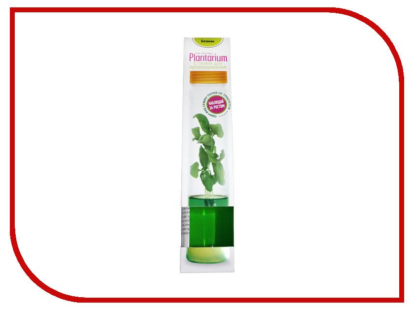 Растение НаучГрад Плантариум Базилик<br>