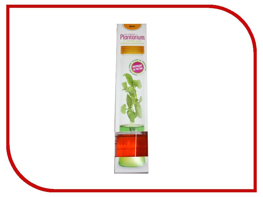 Растение НаучГрад Плантариум Дыня