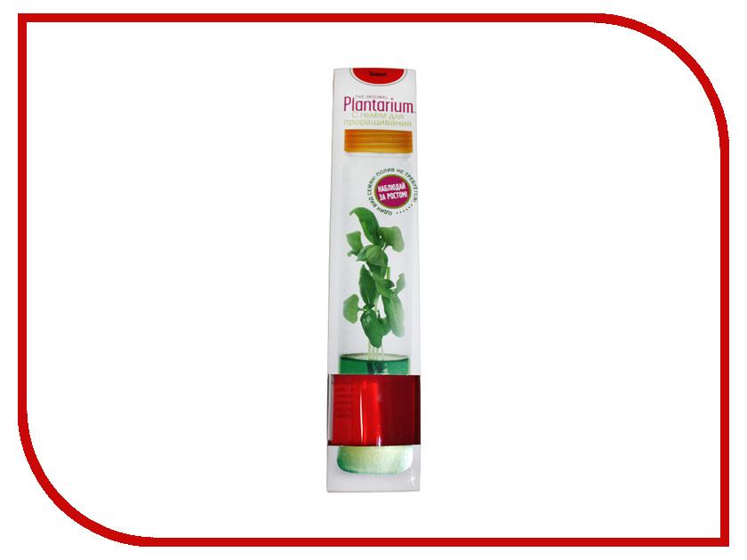 Растение НаучГрад Плантариум Томат