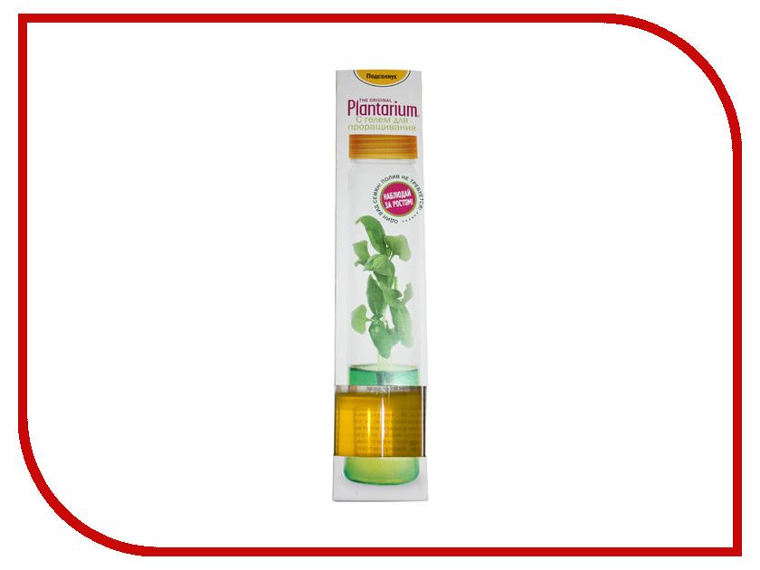 Растение НаучГрад Плантариум Подсолнечник<br>