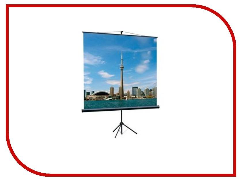 Экран Lumien Eco View 160x160cm Matte White LEV-100105 цена