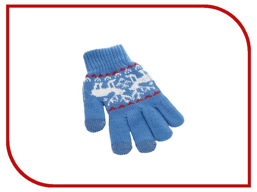 Теплые перчатки для сенсорных дисплеев CBR / Human Friends Mobile Comfort Fiver Blue