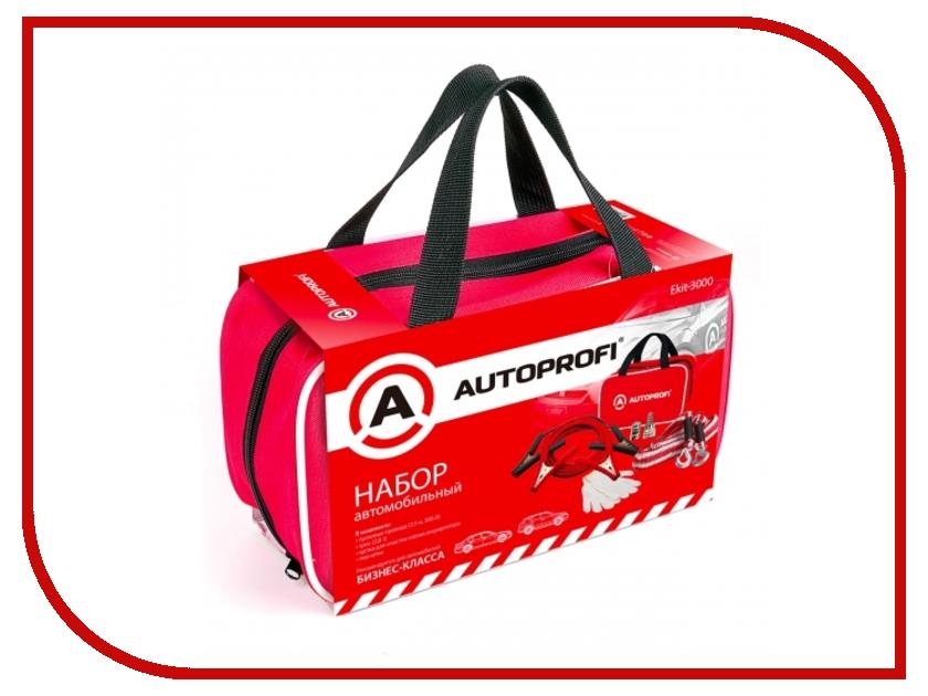 Набор Autoprofi Ekit-3000