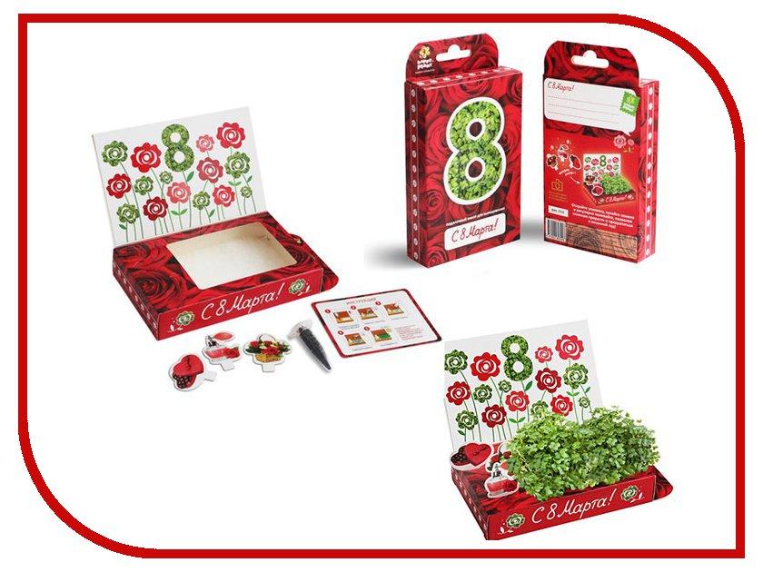 Растение Happy Plant hps-205 8 Марта Розы