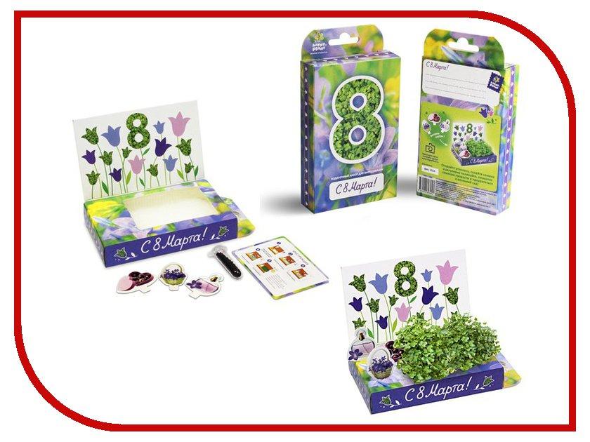 Растение Happy Plant hps-206 8 Марта Колокольчики
