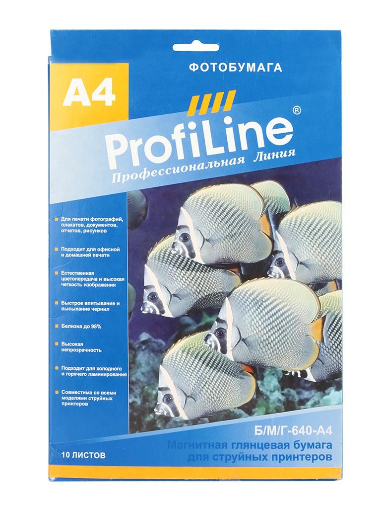 Фотобумага ProfiLine Б/М/Г-640-А4 640g/m2 A4 магнитная глянцевая 10 листов<br>