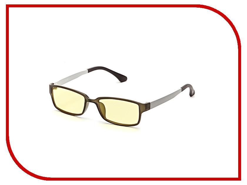 Очки компьютерные SPG Premium AF053 Black-Silver