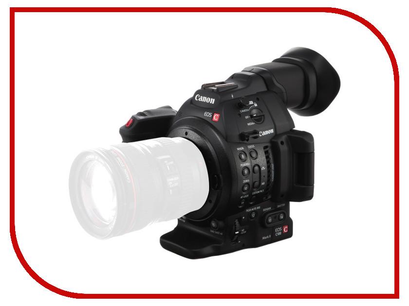 Zakazat.ru: Видеокамера Canon EOS C100 Mark II