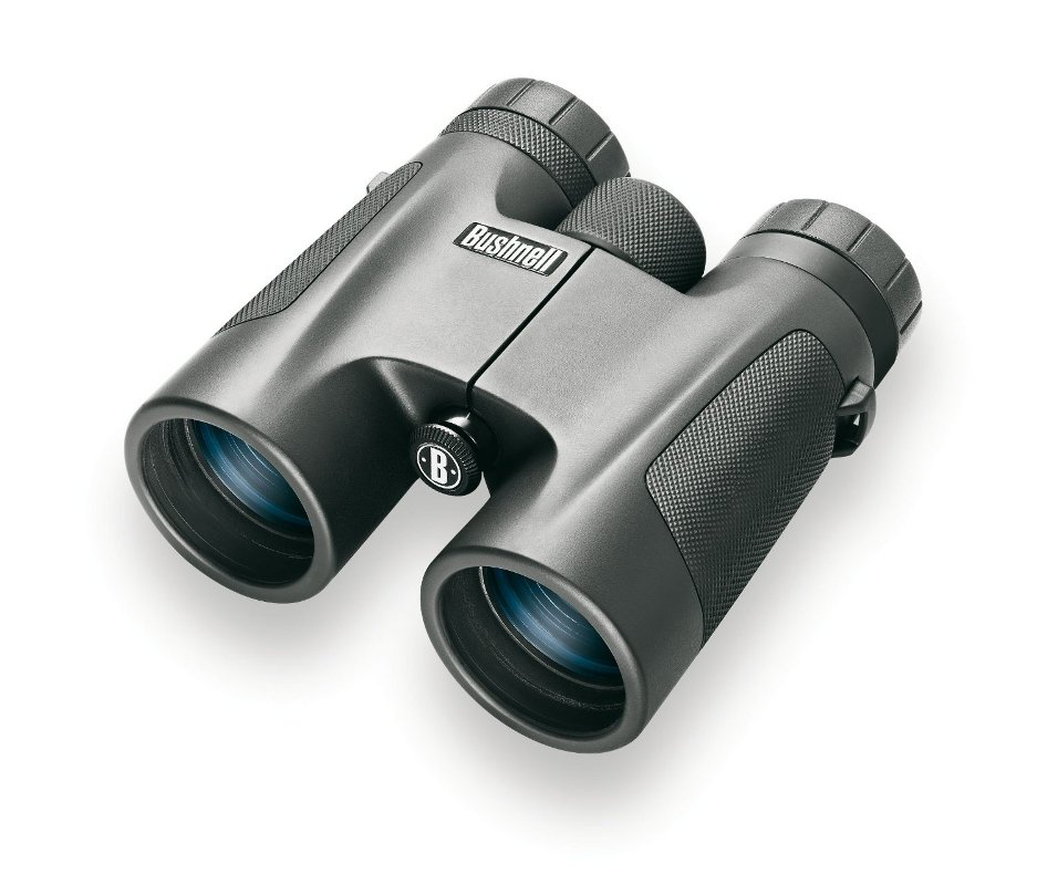 Бинокль Bushnell 8x32 Powerview Roof
