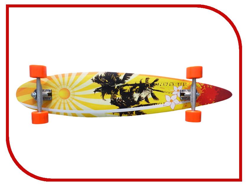 Скейт Atemi ALB-1.13 Beach atemi 305
