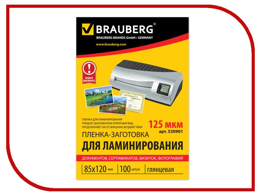 Пленка для ламинатора BRAUBERG 100шт 530901<br>