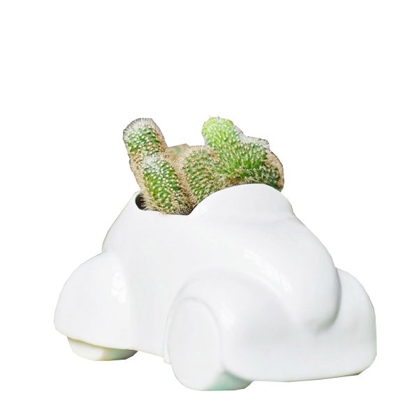 Растение Экочеловеки Eco Машина 7002<br>