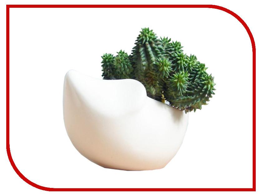 Растение Экочеловеки Eco Ёжик 3001