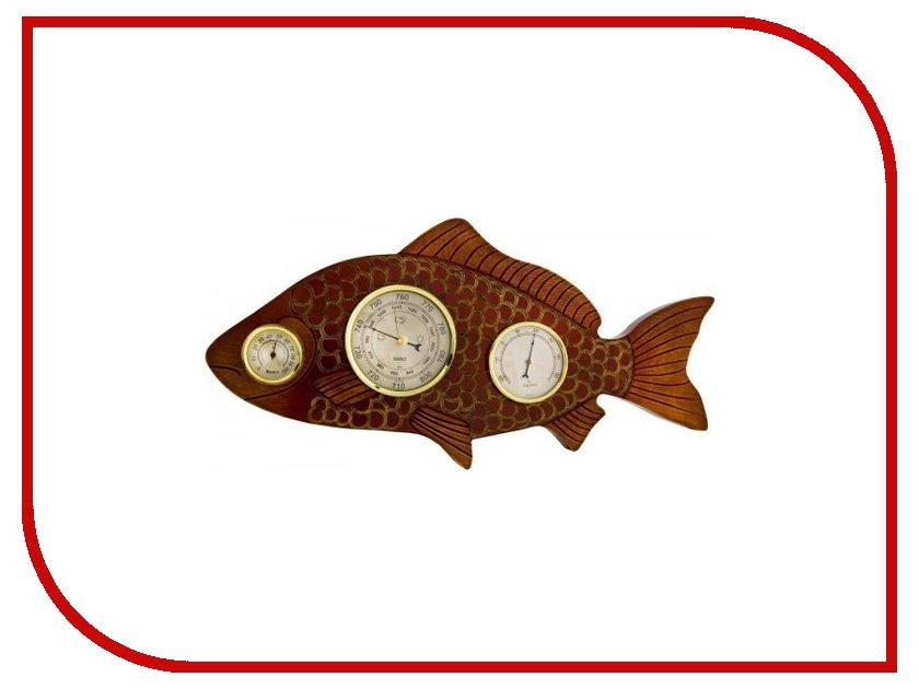 Погодная станция Бриг+ Рыба