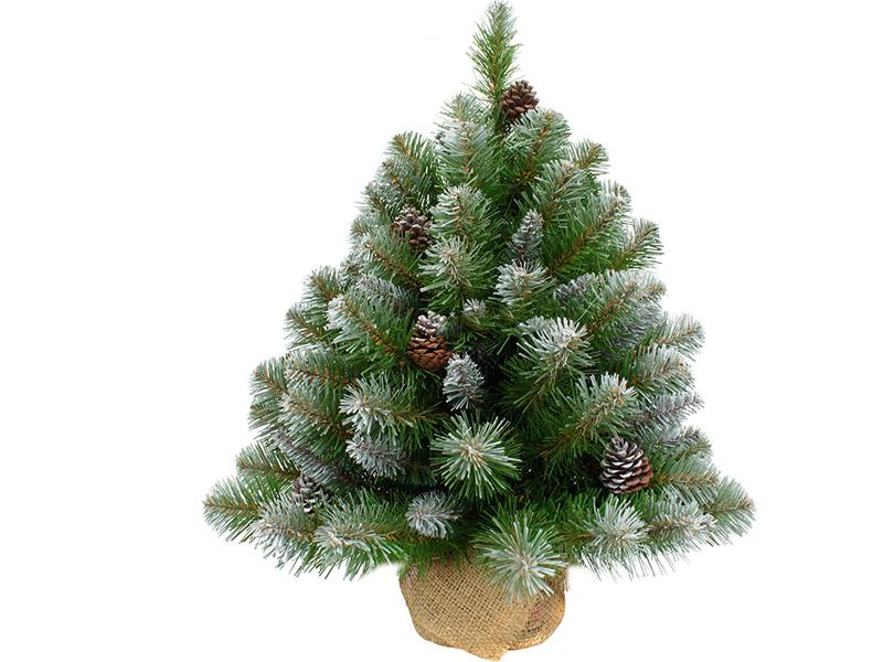 Ель Triumph Tree Императрица с шишками 60cm в мешочке Заснеженная 73701 / 387065