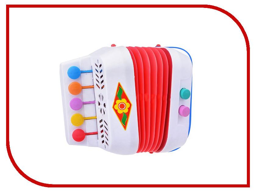 Детский музыкальный инструмент ТулИгрушка Гармонь меховая С1-1