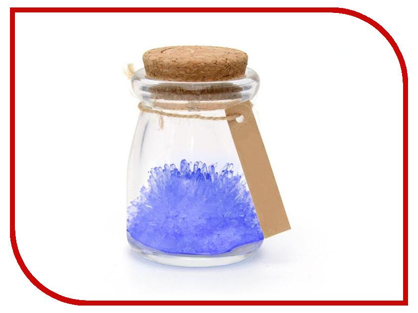 Набор для выращивания кристаллов Crystal Garden Счастья Blue