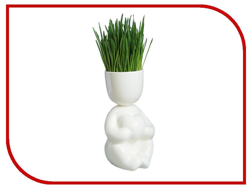 Растение Экочеловеки Eco Романтик 1007 White