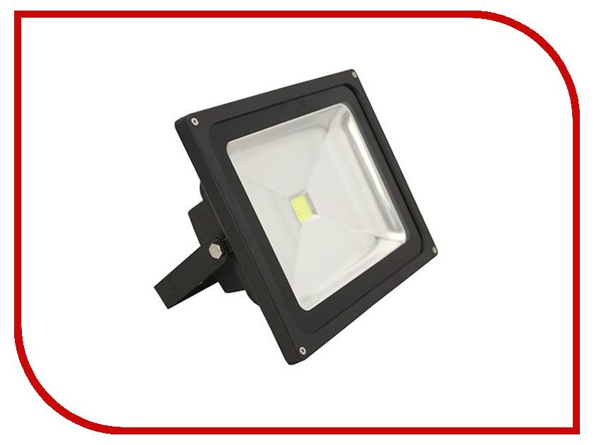 Лампа Luck & Light AC220 220V-240V 30W 6000K IP65 Black LF30Wblack