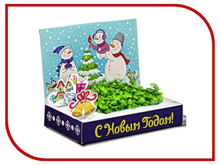 Растение Happy Plant Живая открытка Счастья в Новом году HPS-228<br>