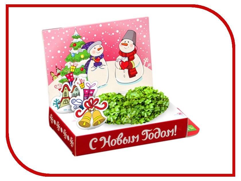 Растение Happy Plant Живая открытка Любви в Новом году HPS-227