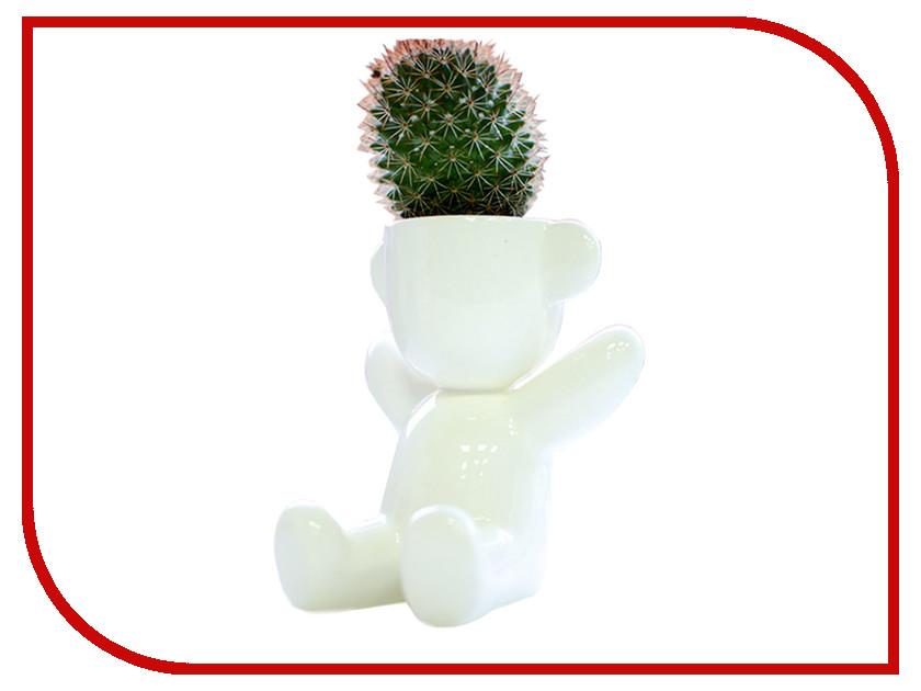 Растение Экочеловеки Eco Малыш с ушками 9002