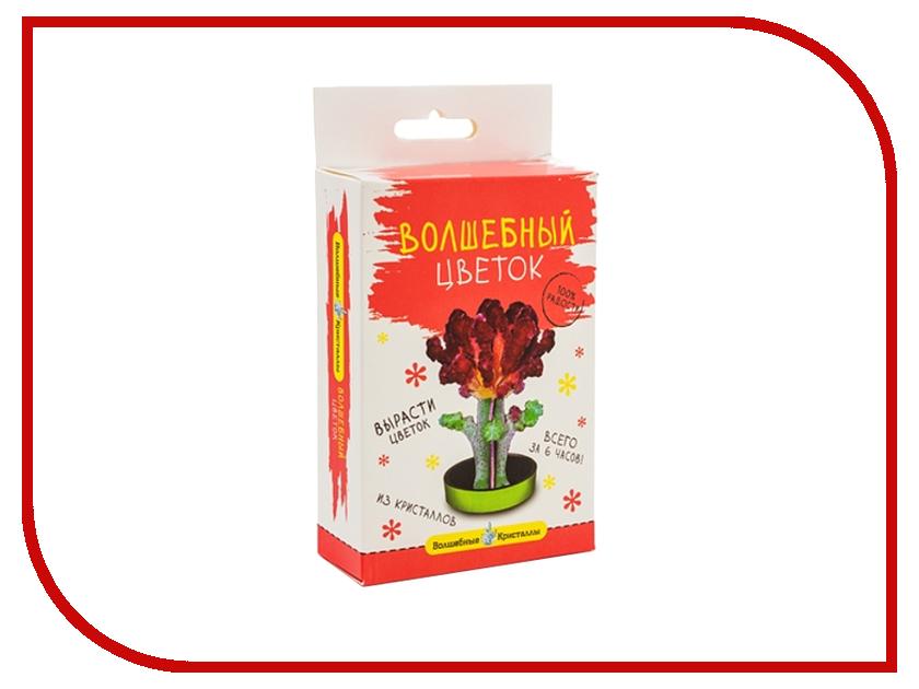 Набор для выращивания кристаллов Bumbaram Бордовый цветок CD-132<br>
