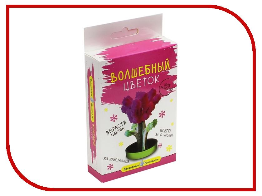 Набор для выращивания кристаллов Bumbaram Розовый цветок CD-133<br>
