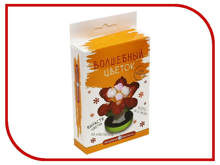 Набор для выращивания кристаллов Bumbaram Красный цветок CD-128