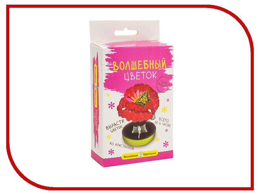 Набор для выращивания кристаллов Bumbaram Алый цветок CD-129