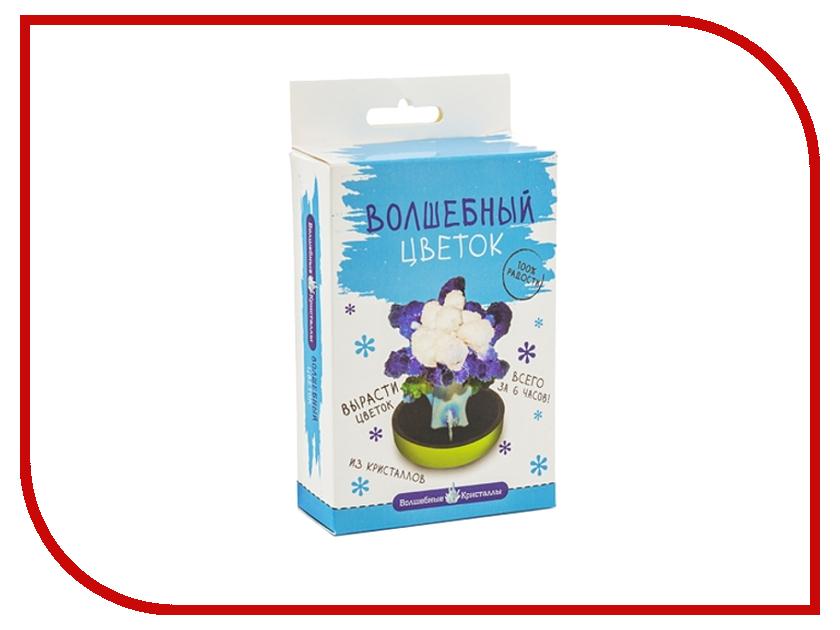 Набор для выращивания кристаллов Bumbaram Васильковый цветок CD-130